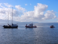 Coast Guard boats and anchored boat