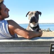 enjoying the sun with my human