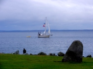 jaunty sailboat with flags