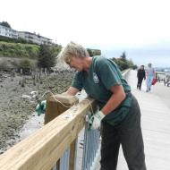 Marty Fixes The Boardwalk