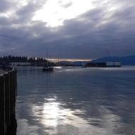 polished bay