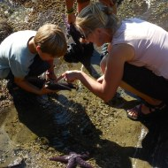 Kirsten explores the starfish with her sons