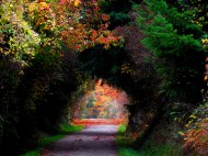portal into autumn
