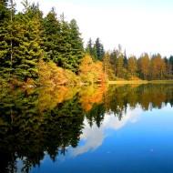 Lake Padden reflection