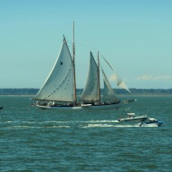 tall ship and motorboats