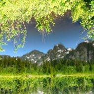 near Mount Baker, Washington