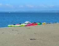 colorful kayaks at Boulevard Park