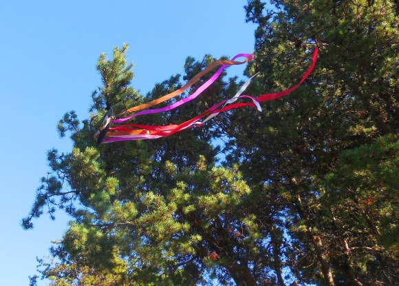kite in tree