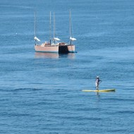 paddle-boarder