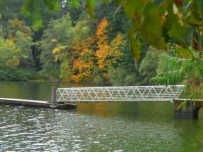 Lake Padden in autumn