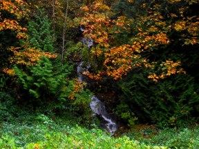 waterfall near Bellingham, Washington