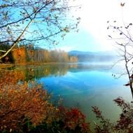 Misty Lake Padden (photo by Karen Molenaar Terrell)
