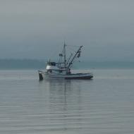 fishing boat on Bellingham Bay