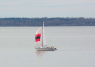 sailboat on Bellingham Bay
