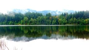 Reflection on Lake Padden (Karen Molenaar Terrell)