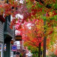 Autumn in Fairhaven