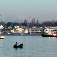 Canadian Coastals in the background (photo by Karen Molenaar Terrell)