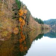 Autumn Reflection, photo by Karen Molenaar Terrell