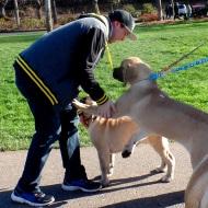 Sol Meets a New Friend
