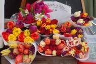 Tulips at the Bellingham Farmers Market (photo by Karen Molenaar Terrell)