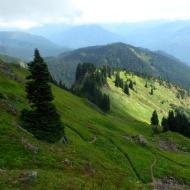 View from Sauk Mountain