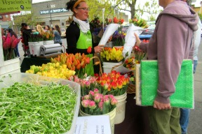 Tulips at the Farmers Market