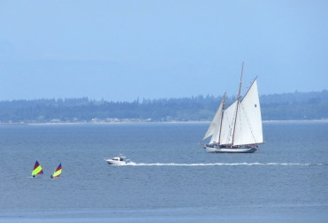 schooner 7 this one