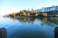 Autumn Reflection in Bellingham Bay