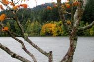 Lake Padden autumn