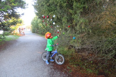 little boy looking at Christmas decorations