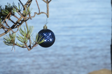 bellingham ornament this one