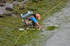 research woman on Bellingham Bay
